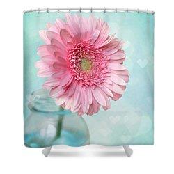 Daisy Love Shower Curtain by Amy Tyler
