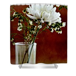 Daisy Mum On Red 3 Shower Curtain by Angelina Vick