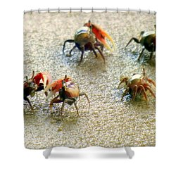 Dancing Of The Fiddlers Shower Curtain by Karen Wiles