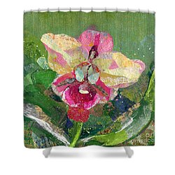 Dancing Orchid I Shower Curtain by Shadia Derbyshire