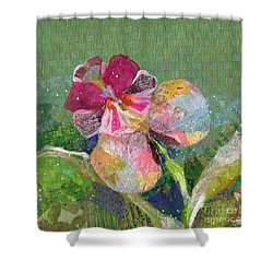 Dancing Orchid IIi Shower Curtain by Shadia Derbyshire