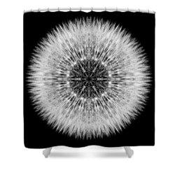 Dandelion Head Flower Mandala Shower Curtain by David J Bookbinder