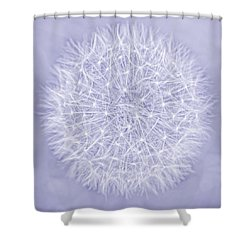 Dandelion Marco Abstract Lavender Shower Curtain by Jennie Marie Schell