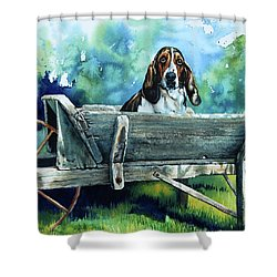 Darn Dog Days Shower Curtain by Hanne Lore Koehler