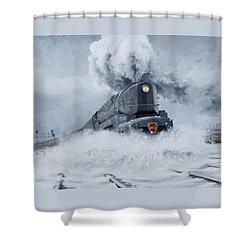 Dashing Through The Snow Shower Curtain by David Mittner