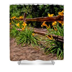 Day Lilies Shower Curtain by Michael Pickett
