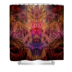 Decalcomaniac Mirror Shower Curtain by Otto Rapp