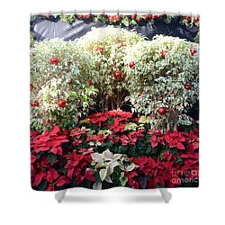 Decorated For Christmas Shower Curtain by Kathleen Struckle