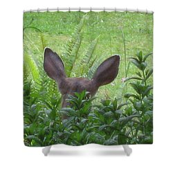 Deer Ear In A Mint Patch Shower Curtain by Kym Backland