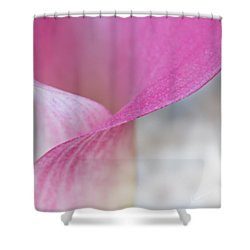 Delicate Curves Shower Curtain by Kume Bryant