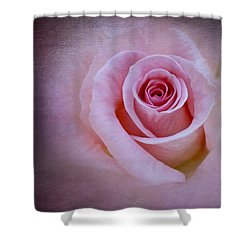 Delicately Pink Shower Curtain by Ivelina G