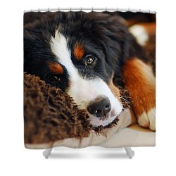 Delilah Shower Curtain by Lisa Phillips