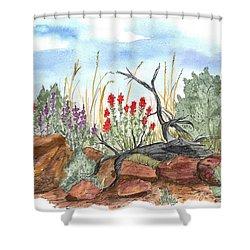 Desert Wildflowers Shower Curtain by Cathie Richardson
