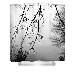 Design By Nature Shower Curtain by Brian Wallace