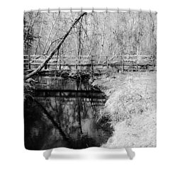 Desolate Shower Curtain by Michelle Milano