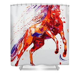 Destiny Shower Curtain by Penny Warden
