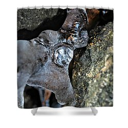 Diamond In The Ruff Ice Shower Curtain by Peggy  Franz