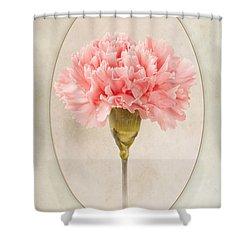 Dianthus Caryophyllus Carnation Shower Curtain by John Edwards