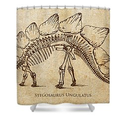 Dinosaur Stegosaurus Ungulatus Shower Curtain by Aged Pixel