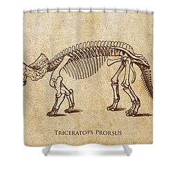 Dinosaur Triceratops Prorsus Shower Curtain by Aged Pixel