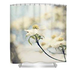 Dogwood No 1 Shower Curtain by Erin Johnson