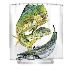 Dolphin Kingfish Shower Curtain by Carey Chen