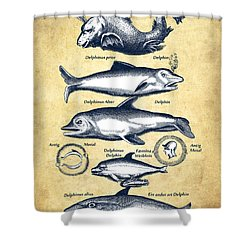 Dolphins - Historiae Naturalis - 1657 - Vintage Shower Curtain by Aged Pixel