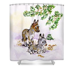 Donkeys Shower Curtain by Diane Matthes