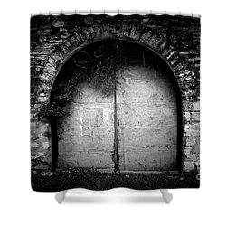 Doors To The Other Side Shower Curtain by Trish Mistric
