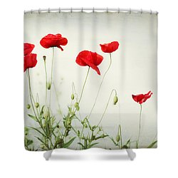 Dorothy Shower Curtain by Amy Tyler