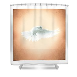 Dove In Flight Triptych Shower Curtain by YoPedro