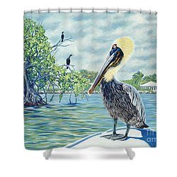 Down In The Keys Shower Curtain by Danielle  Perry