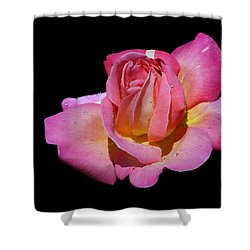 Dream Catcher Shower Curtain by Doug Norkum