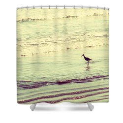 Dream In Aquamarine Shower Curtain by Amy Tyler