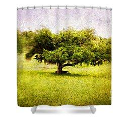 Dreamland Shower Curtain by Scott Pellegrin