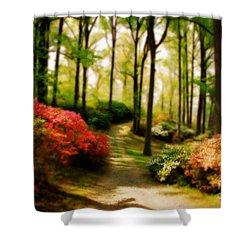 Dreamy Path Shower Curtain by Lois Bryan