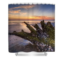Driftwood On The Beach Shower Curtain by Debra and Dave Vanderlaan