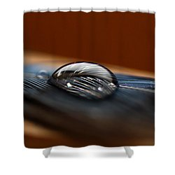Drop On A Bluejay Feather Shower Curtain by Susan Capuano