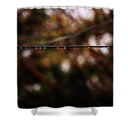 Drops Shower Curtain by Jessica Shelton
