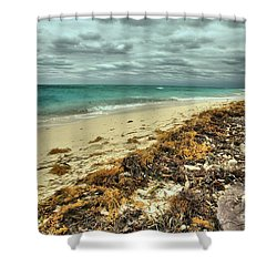 Dry Tortugas Beach Shower Curtain by Adam Jewell
