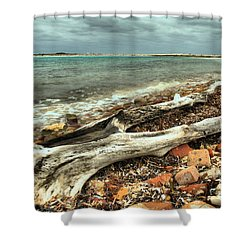 Dry Tortugas Driftwood Shower Curtain by Adam Jewell