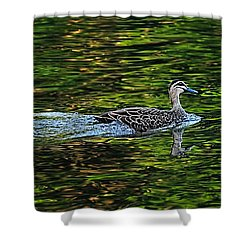 Ducks On Green Reflections - Panorama Shower Curtain by Kaye Menner