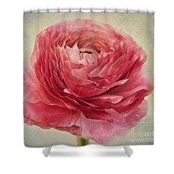 Dusty Pink Shower Curtain by Priska Wettstein