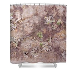 Early Fall Shower Curtain by Michele Myers