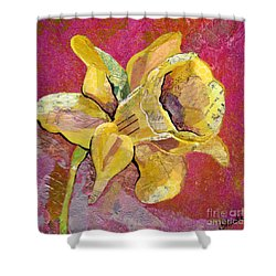 Early Spring I Daffodil Series Shower Curtain by Shadia Derbyshire