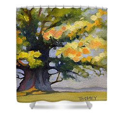 Earlysville Virginia Ancient White Oak Shower Curtain by Catherine Twomey