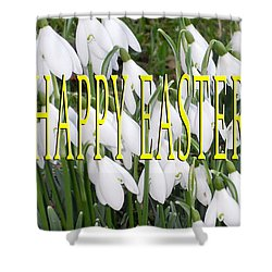 Easter 5 Shower Curtain by Patrick J Murphy