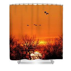 Easter Sunrise Shower Curtain by Elizabeth Winter