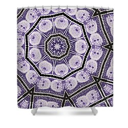 Einstein Mandala Shower Curtain by Andy Prendy