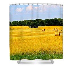 Eldorado Shower Curtain by Frozen in Time Fine Art Photography